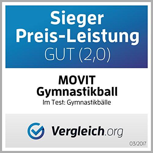 MOVIT Gymnastikball mit Pumpe Fitnessball Sitzball 65 cm in silber, Maximalbelastbarkeit bis 300kg, Anti Burst Material - 2