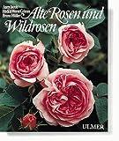 Alte Rosen und Wildrosen