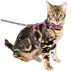 Arnés para gatos con correa 120cm x 10mm, rosa