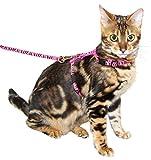 Kerbl Arnés para gatos con correa 120cm x 10mm, rosa