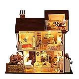 Oshide Puppenhaus Bausatz Holz Modell Set Möbliert Zimmer,Dollhouse DIY Kit Geschenk für Jungen und Mädchen zum Spielen Miniatur Kreativ Geburtstag Weihnachts Geschenk (11#)
