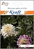 Best Buds Crop - DAHLIA MIGNON MIX FLOWER SEEDS BY KRAFT SEEDS Review