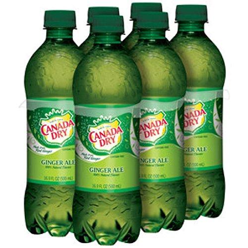 canada-dry-ginger-ale-169-oz-bottle-pack-of-24