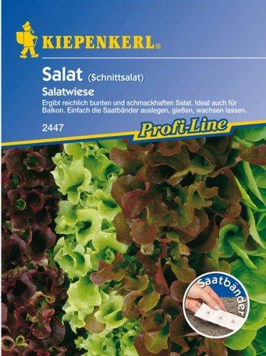 Schnittsalat \'Salatwiese\' Saatband,4 x 2,5