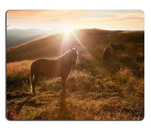 Mauspad Gaming Mauspad Naturkautschuk-Mauspad Sonnenuntergang in Bergen Natur Hintergrund Pferde Silhouette im Dunst und Sonnenstrahlen auf der Sommerwiese im Vintage-Retro-Hipster-Stil M0A05088