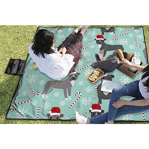 Acryl-stick Cane (BigHappyShop Picnic Blanket Pitbull Peppermint Stick Winter Candy Cane Ice Waterproof Extra Large Outdoor Mat Camping Or Travel Easy Carry Compact 59