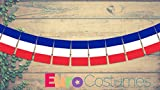 France French Tricolore Polyester Fabric Bunting 5m Long