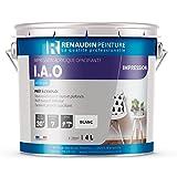 Renaudin Malerei 114121CAE Kunstdruck Acryl Wand/Decke Innen/Außen opacifiante weiß 4l