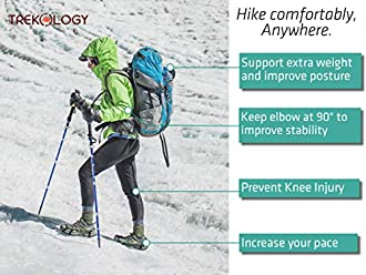 Trekkingstock Bild