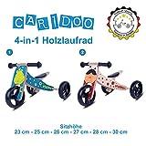 Caridoo® Kinder Mini Holz laufrad 7 Zoll 4-in-1 für Mädchen und Jungen; Beliebte Kindermotive: Marienkäfer und Frosch, ab 1 Jahr (Froschkönig)
