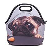 Best Kids Lunches On The Planets - Pp7g Pretty Sad Pug Lunch Tote Insulated Reusable Review