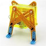 BGNing Elektrischer Roboter Mechanisches Insekt Crawl Modell Spielzeug DIY Pädagogisches 3D Bausätze für Kinder Kinder Physikalische Wissenschaft Experiment