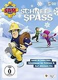 Feuerwehrmann Sam - Schneespaß [2 DVDs]