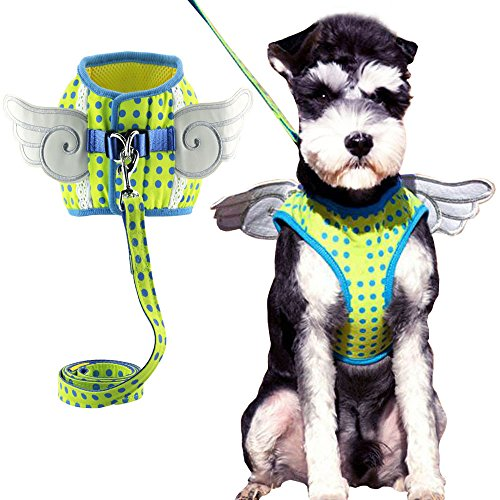 Bolbove Pet Flügel Dots Lace Mesh Weste Geschirr und Leine-Set für Katzen Hunde, Large, Grün (Lace Leinen Trim)