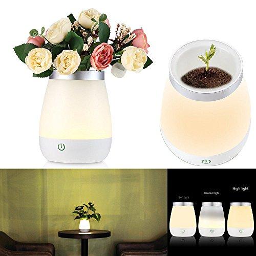 Rchargeable 3-in-1 LED Vase Fish Bowl Tabelle Nacht Licht Dekoration Lampe Geschenk ? 119 mm H 146 mm -