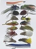 Pike Fliegen–Set von sechzehn + Fly Box Größe 4bis 3/0mit Weed Guards auch verwendet, wie Bass Fliegen
