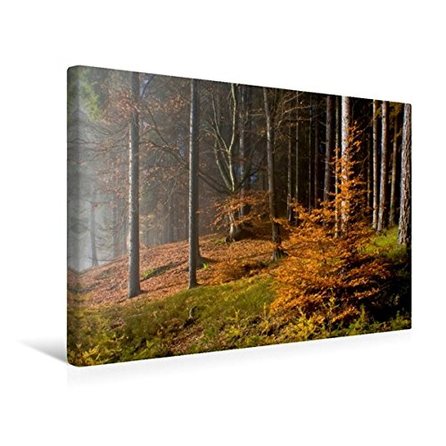 Premium Textil-Leinwand 45 cm x 30 cm quer, Herbst am Hohen Gallin   Wandbild, Bild auf Keilrahmen, Fertigbild auf echter Leinwand, Leinwanddruck (CALVENDO Natur)