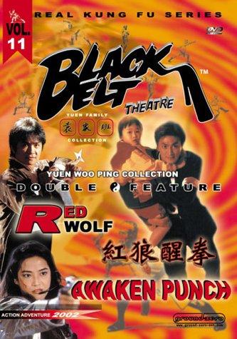 shi-po-tian-jian-usa-dvd
