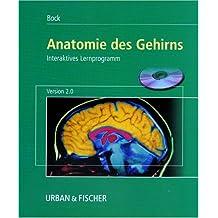Anatomie des Gehirns 2.0, 1 CD-ROM Interaktives Lernprogramm