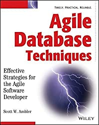 Agile Database Techniques: Effective Strategies for the Agile Software Developer 1st edition by Ambler, Scott (2003) Taschenbuch