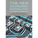 The New Economic Sociology: Developments in an Emerging Field