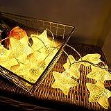 Y-XM Catena Luminosa Con 20 LED 3m Stella Luci a corda Per Interno All'aperto Natale Nozze arredamento