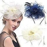REKYO 2 Packungen Headpiece & Fascinator Hut für Frauen, Federn Flower Headpiece & Fascinator Haar Clip Kentucky Derby Mesh Hochzeit Cocktail Tea-Party-Kopfbedeckung-Hut für Frauen