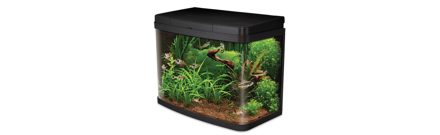 Interpet Insight Glass Aquarium Fish Tank Premium Kit, 40 L