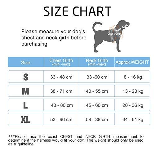 Rabbitgoo No-Pull-Hundegeschirr einstellbar weich Hundegeschirr Haustier einfach sicher Kontrolle Körper bequem Hunde Leine für kleine Hunde schwarz 3 Größe - 3