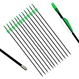 "PG1 28"" Fiberglass Archery Target Arrows Youth Kids Practice Arrow with Bullet Point"