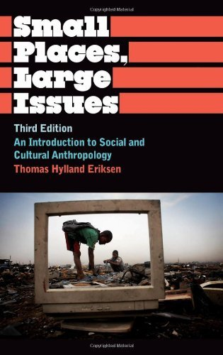 By Thomas Hylland Eriksen Small Places, Large Issues: An Introduction to Social and Cultural Anthropology (Anthropology, Culture and Society) (3rd Edition)