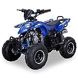 Kinder Quad S-5 Polaris Style 125 cc Motor Miniquad 125 ccm Razer (Blau)