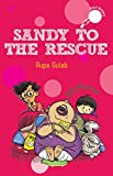Sandy to the Rescue (Hole Books)