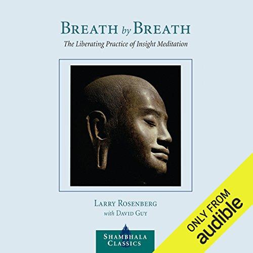 Breath By Breath: The Liberating Practice of Insight Meditation - Zinn Ballerinas