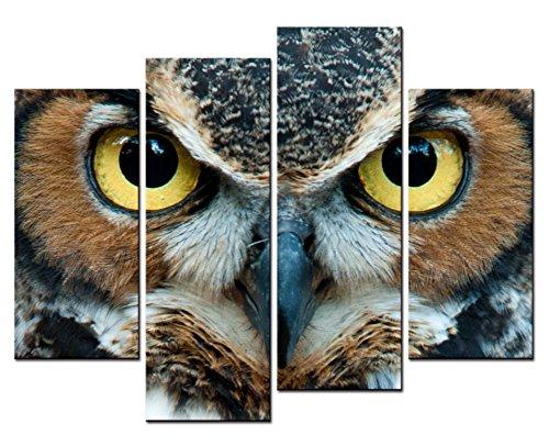 smartwallart-Tier Gemälde Art Wand ein Owl 's Head Nahaufnahmen mit leuchtend gelben Augen 4Panel Bild Kunstdruck auf Leinwand für moderne Zuhause Dekoration - Owl Giclée Print