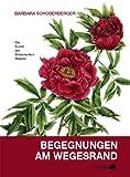 Begegnungen am Wegesrand: Botanische Malerei - Barbara Schoberberger
