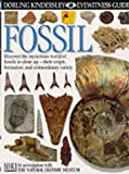 Fossil (Eyewitness)
