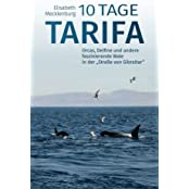 """10 Tage Tarifa: Orcas, Delfine und andere faszinierende Wale in der """"Straße von Gibraltar"""""""