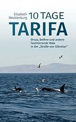 10 Tage Tarifa: Orcas, Delfine und andere faszinierende Wale in der