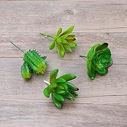 WINOMO 4 piezas plantas suculentas suculentas Plantas suculentas no de plástico para el hogar (verde Schlumbergera bridgesii, punto pequeño de Lotus, Lotus y Cactus de piedra)