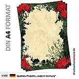 Motiv Briefpapier (Rosen-5108, DIN A4, 25 Blatt) rote Rosen Kletterrosen grüne Blätter Muster Motivpapier Floristik