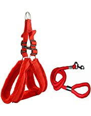 Skora Nylon Padded Red Adjustable Dog Harness & Dog Leash Rope 1.25 Inch For Large Pet