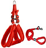 #8: Skora Nylon Padded Red adjustable Dog Harness & Dog Leash Rope 1.25 Inch for Large Pet (Chest Size : 33-42)