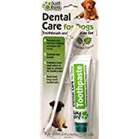 Cepillo de dientes y pasta de dientes para perros de todos los tamaños, antiplaca