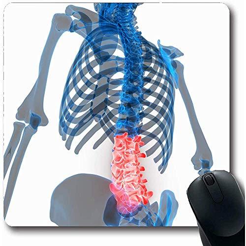 Mauspads Knorpel Rückenmark Lendenwirbel Teil Menschliche Bildung Schmerz Gesundheitswesen Medizin Wirbelsäule Sport Schmerz Mauspad Rutschfeste Gummi Büro Laptop Spielmatte Computer Mousepad 25X30cm