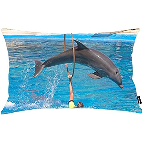 i FaMuRay Almohada Decorativa Sof¨¢ Standard Dolphin Jumping Through Hoop Background, 20x26 inches