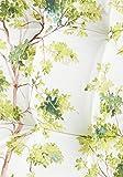 Gartenliegenauflage - grün Valley ekrü