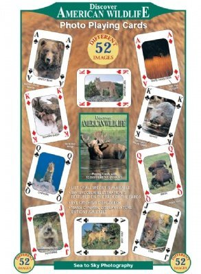 (American Wildlife) - Discover Series Fun Playing Cards - Informational & Educational American Wildlife Serie