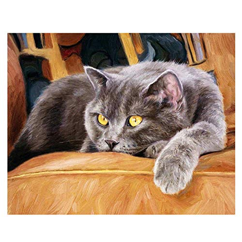 Giunuak Rahmen Katze Tiere DIY malerei by Zahlen wandkunst Bild acryl leinwand malerei für hochzeitsdekoration (Tiere Malerei)