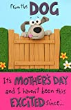 To Mum From The Dog Happy Mother's Day Card Humour Greeting Cards